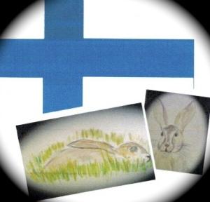 Finnish Hare 2